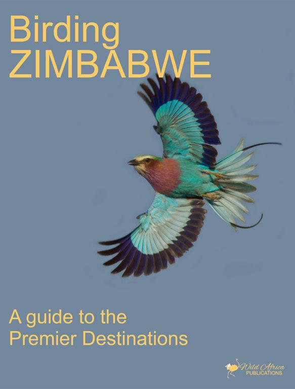 Birding Zimbabwe - 01