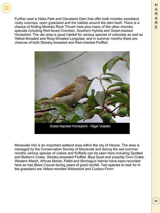 Birding Zimbabwe - 02